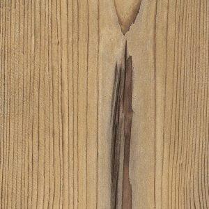 H1487 ST22 Bramberg Pine